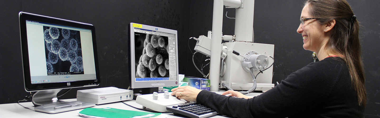 The NIC Scanning Electron Microscope